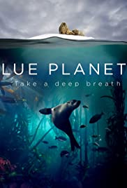 into the blue 2 imdb parents guide