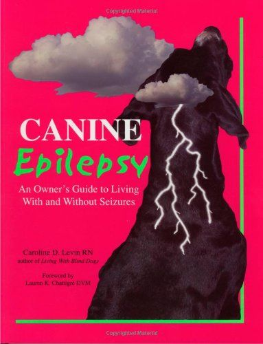 guide dogs for epilepsy