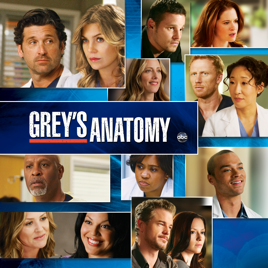 greys anatomy tv guide season 14