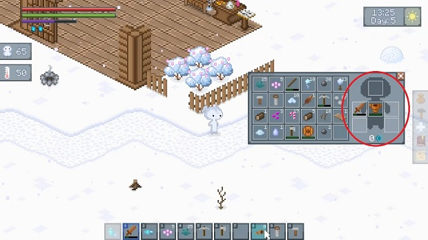 feel the snow game guide