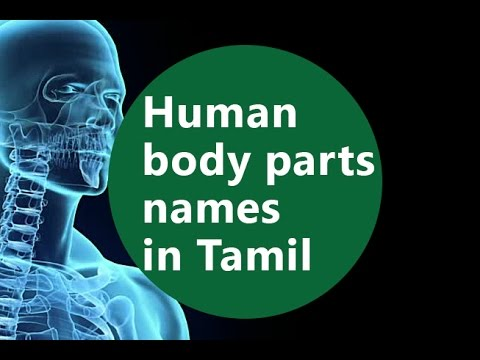 human body systems pdf in tamil